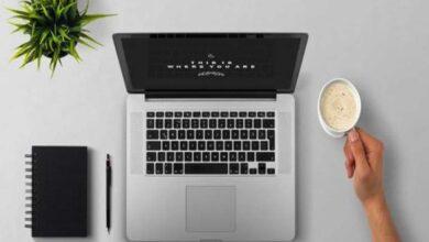 Photo of Desktop plant can help combat workplace stress, study reveals