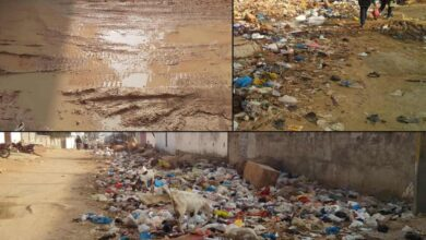 Photo of Hyderabad drowns in garbage, residents express  disgust