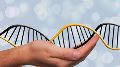 Photo of Genomic medicine may help in addressing many ailments: Study