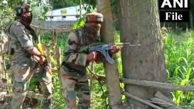 Photo of 2 LeT terrorists killed in Kashmir encounter