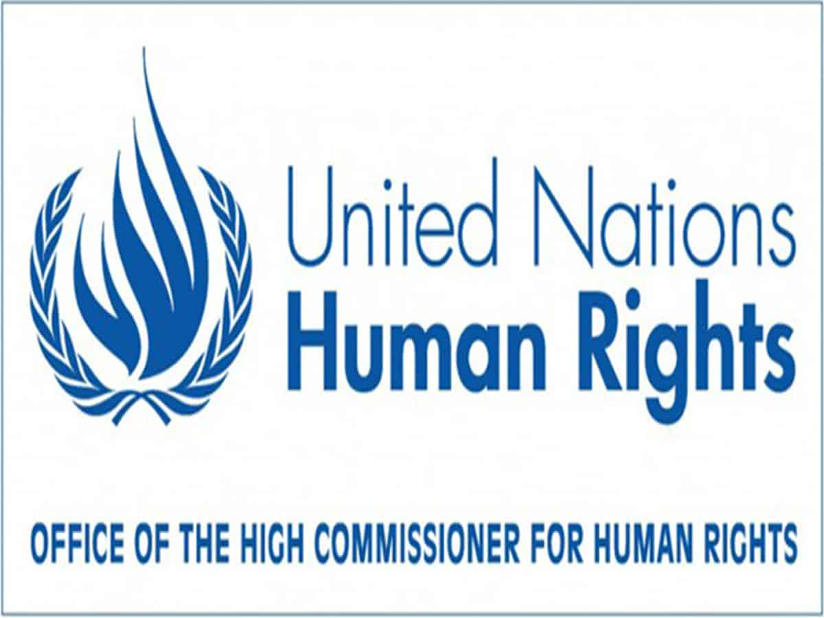 OHCHR's Minorities Fellowship Programme: Applications invited