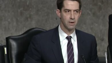 Photo of Coronavirus: Shut down air travel between US, China, urges Senator