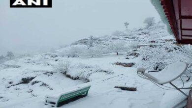Photo of Mandhol village of Shimla receives fresh snowfall