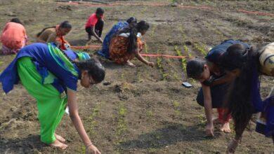 """Photo of Mahesh Babu film """"Maharishi"""" inspires students to farming"""