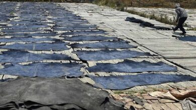 Photo of 248 Tanneries in Kanpur asked to shut down again