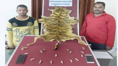Photo of Task force nab two for selling fake tiger skin