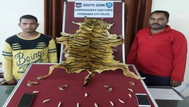Photo of Two held for trying to sell fake tiger skin in Hyderabad