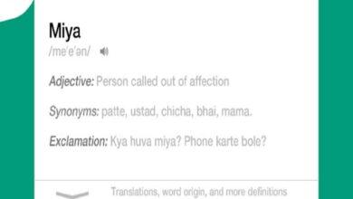 Hyderabadi slang