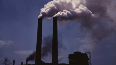 Photo of Breathing polluted air linked to weight gain: Study
