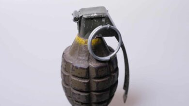 Photo of Hand grenade found in outer Delhi's Haiderpur