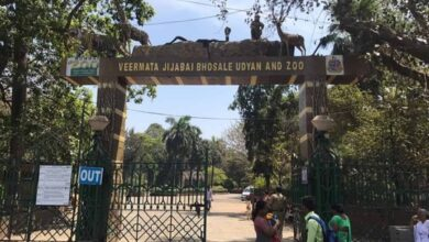 Photo of Coronavirus: BMC closes Mumbai Zoo