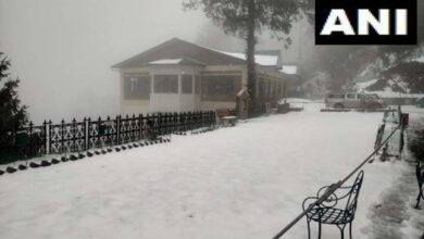 Photo of Narkanda receives fresh snowfall