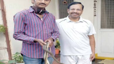 Photo of Snake rescued from Cyberabad Commissioner's residence
