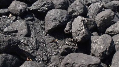 Coal India likely to post marginal production degrowth in FY21