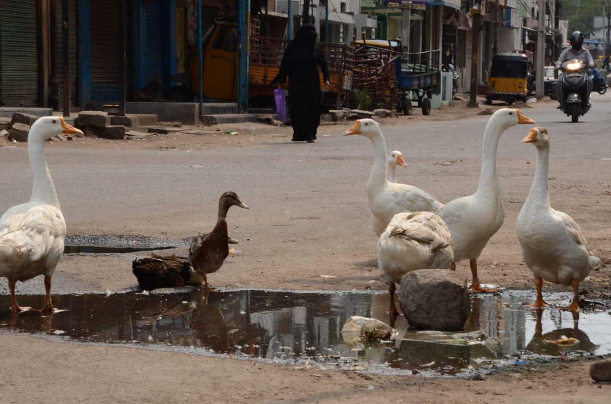 Photos: Lockdown in Hyderabad