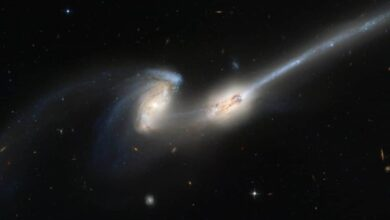 Photo of Discovery of young blazar produced by merger of two galaxies