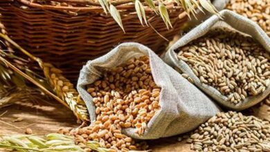 Photo of Meghalaya govt sanctions Rs 26.38cr to procure foodgrains