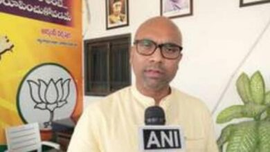 Photo of BJP MP lashes out at AIMIM leader