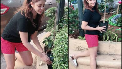 Photo of Lockdown diaries: Payal Ghosh takes to gardening