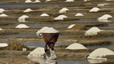 Photo of Photos: Third largest salt pans at Marakkanam during lockdown