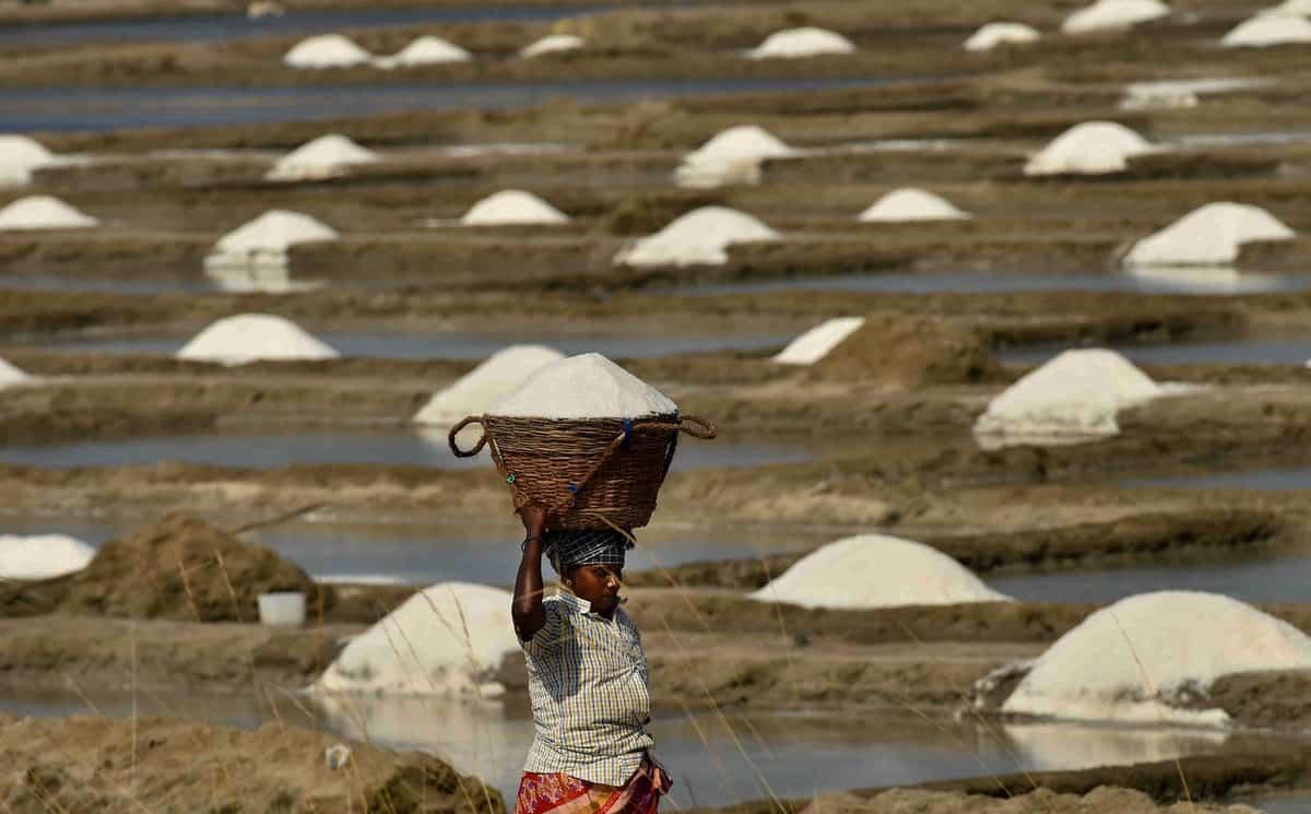 Photos: Third largest salt pans at Marakkanam during lockdown
