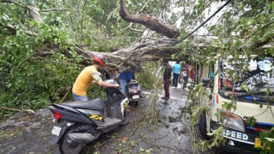 Photo of Cyclone Amphan leaves behind trail of destruction in WB, 12 dead