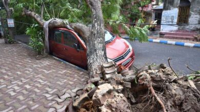 Photo of Photos: The aftermath of super cyclone Amphan in West Bengal