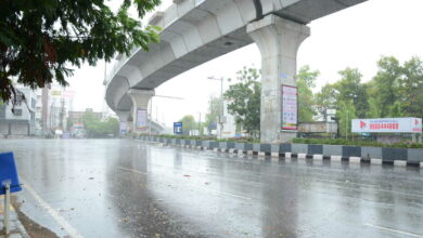 Photo of Thunderstorm with gusty winds likely to occur in TS : Met