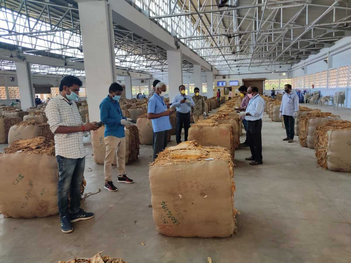 FAIFA appeals for an urgent rescue package for tobacco farmers