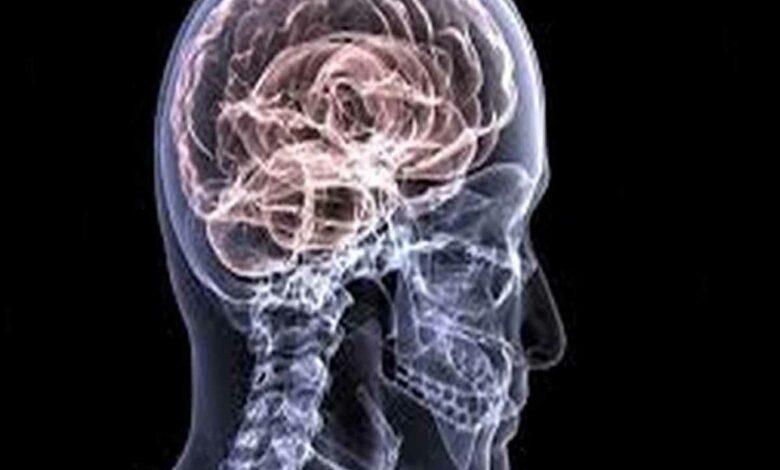 Neurological emergencies should not be delayed: Neurologist