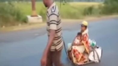 Photo of Video of migrant hauling wife, son on makeshift cart goes viral