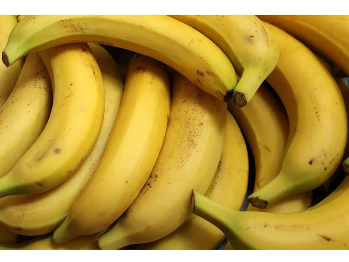 Jobless teacher sell bananas