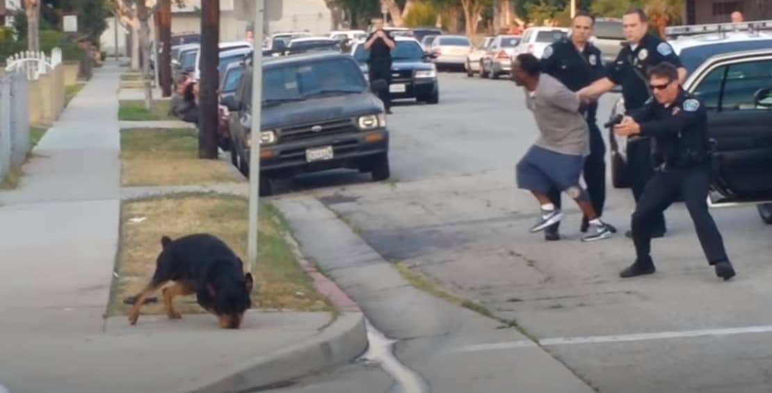 Leon Rosby's dog Max mercilessly being killed by policeman.