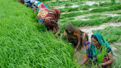 Photo of BJP opposes new agricultural policy of Telangana