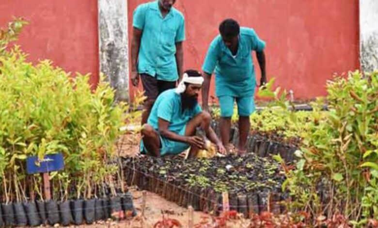India's biggest plant nursery in jail takes root in Telangana