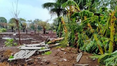 Photo of Video: Cyclone Nisarga in Maharashtra