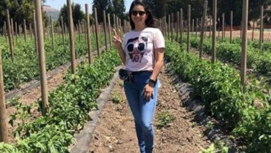 Photo of Sunny Leone wants to return to Mumbai as soon as possible