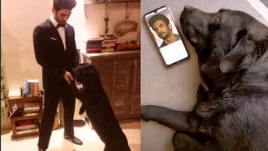 Photo of Sushant Singh Rajput's Pet Dog Fudge misses him