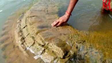 Photo of 500-year-old temple submerged in Mahanadi found