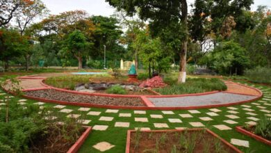 Urban bio-diversity wing of GHMC develop Indira Park