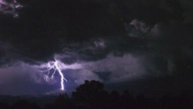 Photo of Lightning claims 110 lives in UP, Bihar in two days