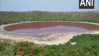 Photo of Lonar Lake changes colour to pink; leaves experts amazed