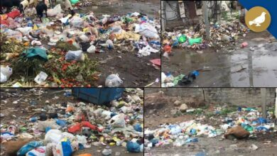 Photo of Garbage not collected regularly by GHMC