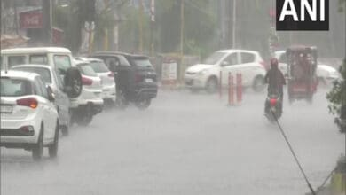 Photo of Punjab: Rain lashes parts of Amritsar
