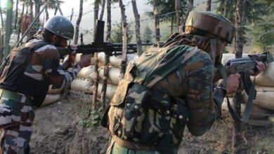 Pak violates ceasefire on LoC in Poonch