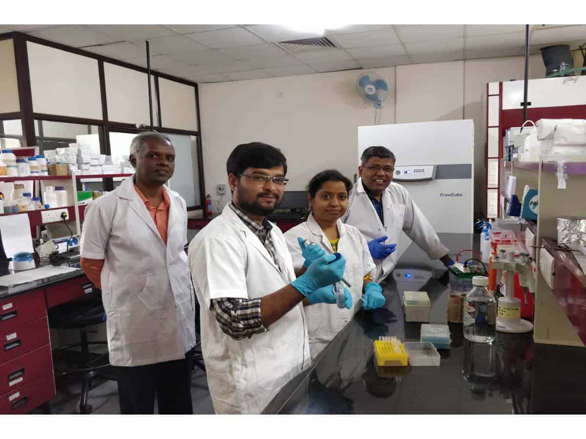 UoH researchers identify possible cause for platelet reduction in dengue patients