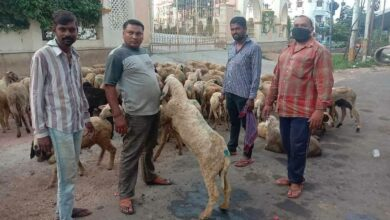 Eid-ul-Adha butchers to charge more for 'Qurbani'