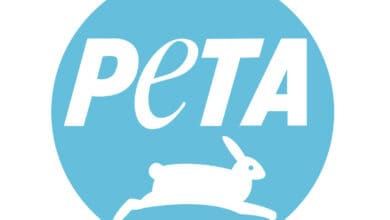 Photo of PETA seeks closure of illegal wet-markets to prevent another pandemic