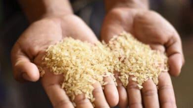 Photo of Delhi cabinet approves doorstep delivery of ration scheme