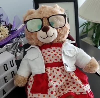 Ryan Reynolds offers monetary reward to help find lost teddy